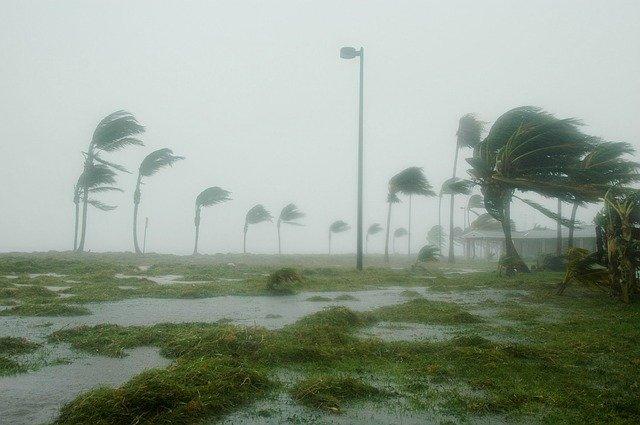 """Emiten Alerta Azul para el sur de Sonora por huracán """"Nora"""". Imagen de David Mark en Pixabay"""