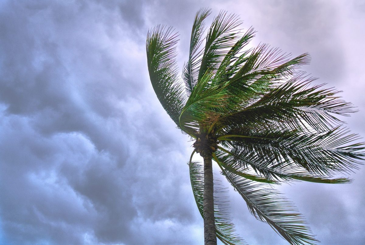 """Sonora emiten alerta azul huracán """"Olaf"""". Foto de Suparerg Suksai en Pexels"""