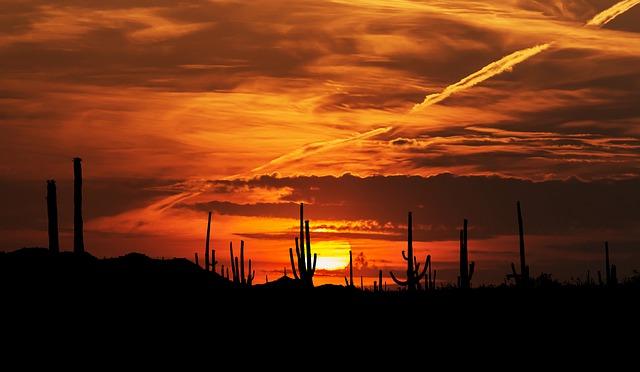 Impulsaremos de manera extraordinaria el turismo en el estado: Alfonso Durazo Montaño. Imagen de RENE RAUSCHENBERGER en Pixabay